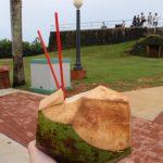 椰子の実ジュース