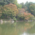 北池景観2